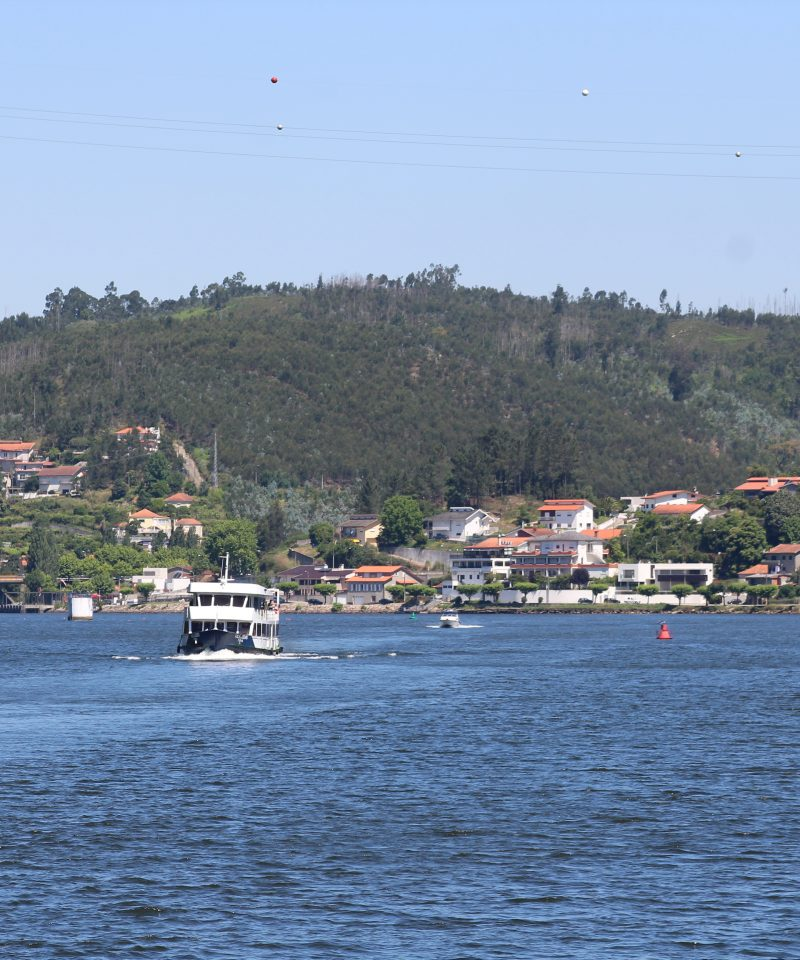 Boat in Douro river doing a cruise
