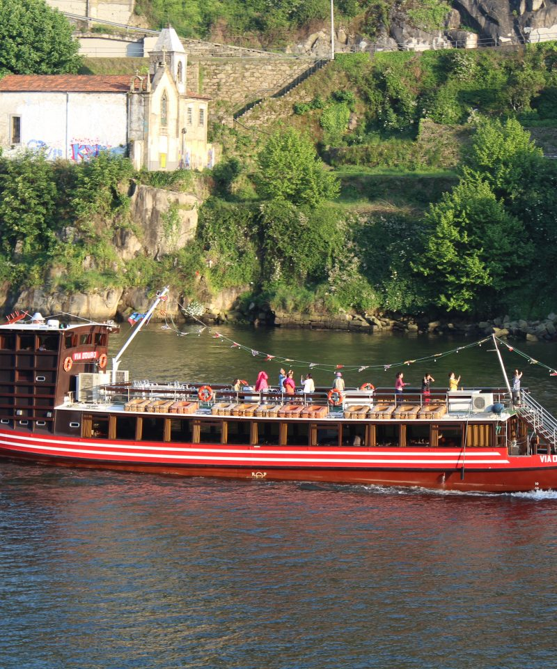 Douro cruise with lunch or dinner on board with view over Vila Nova de Gaia