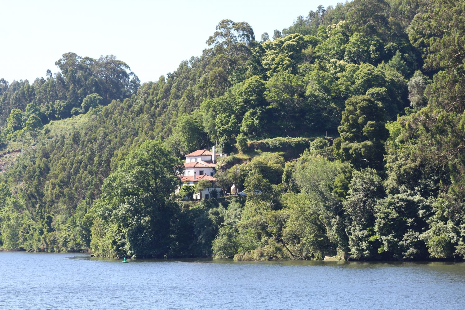 Beautiful houses near douro river