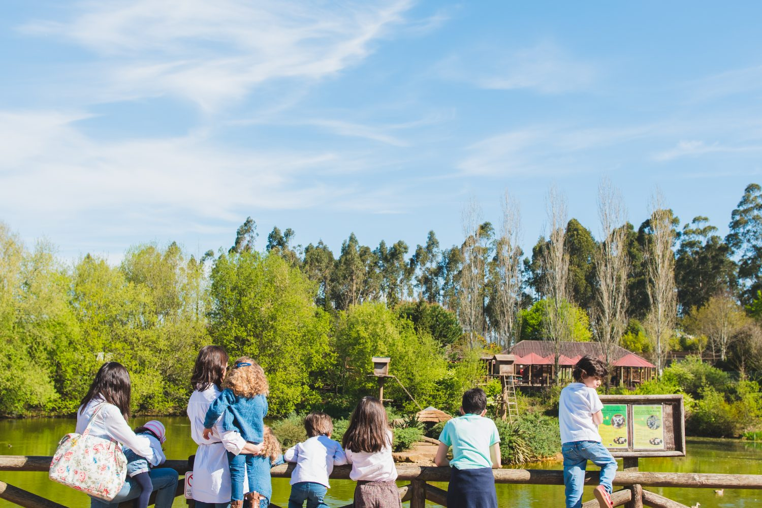 Children at the looking at the lake at Zoo santo inacio Porto