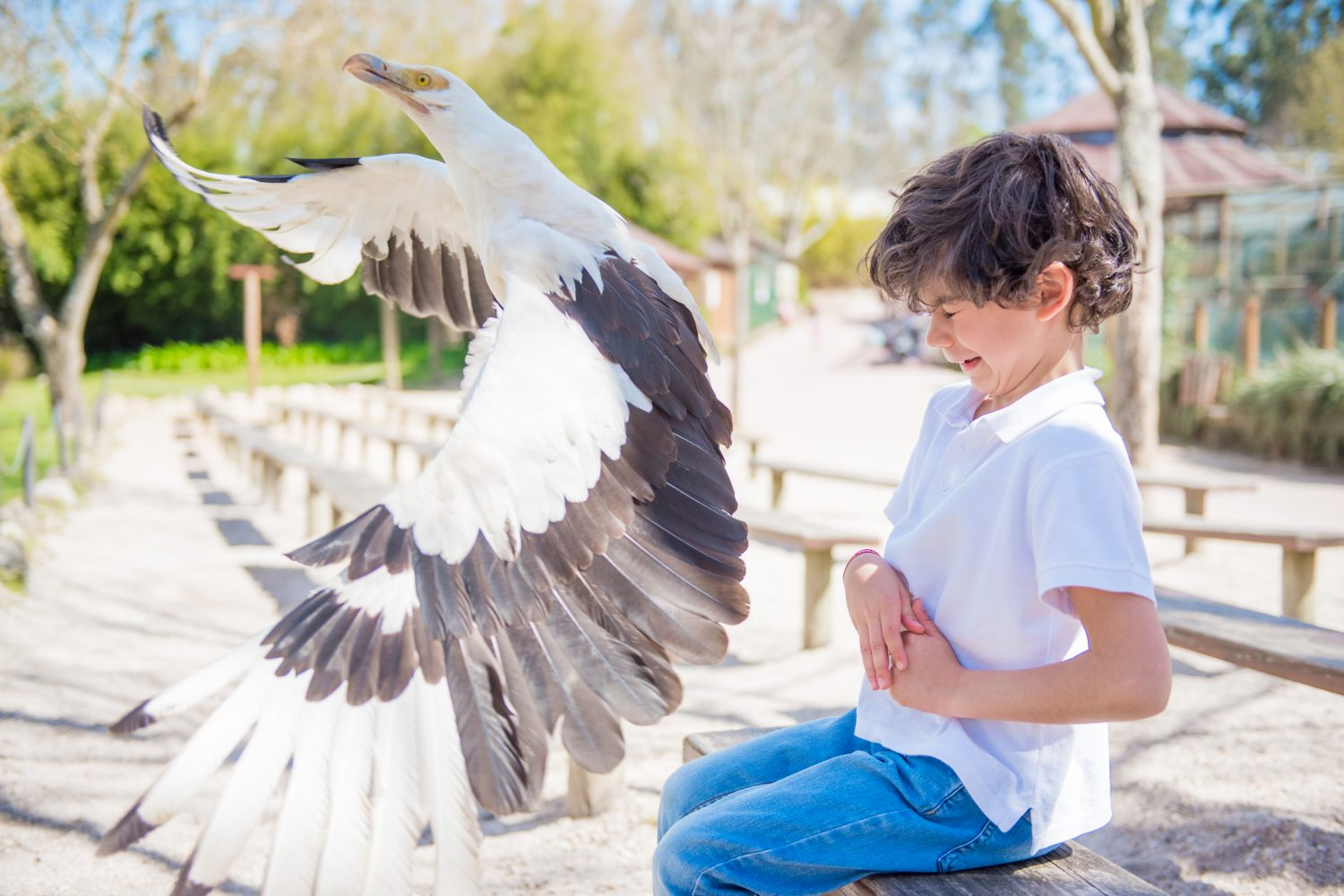 Children with bird Zoo santo inacio Porto